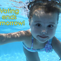 Voting in our ISR Summer Photo Contest ends tomorrow